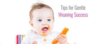 Tips for Gentle Weaning Success