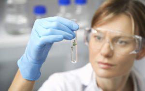 The Embryo Transfer Procedure