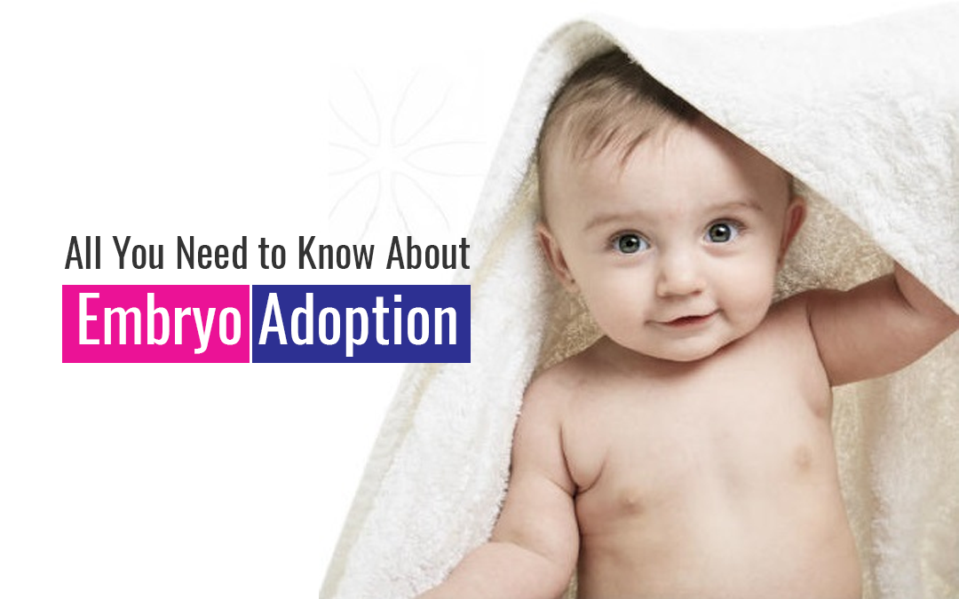 All You Need to Know About Embryo Adoption